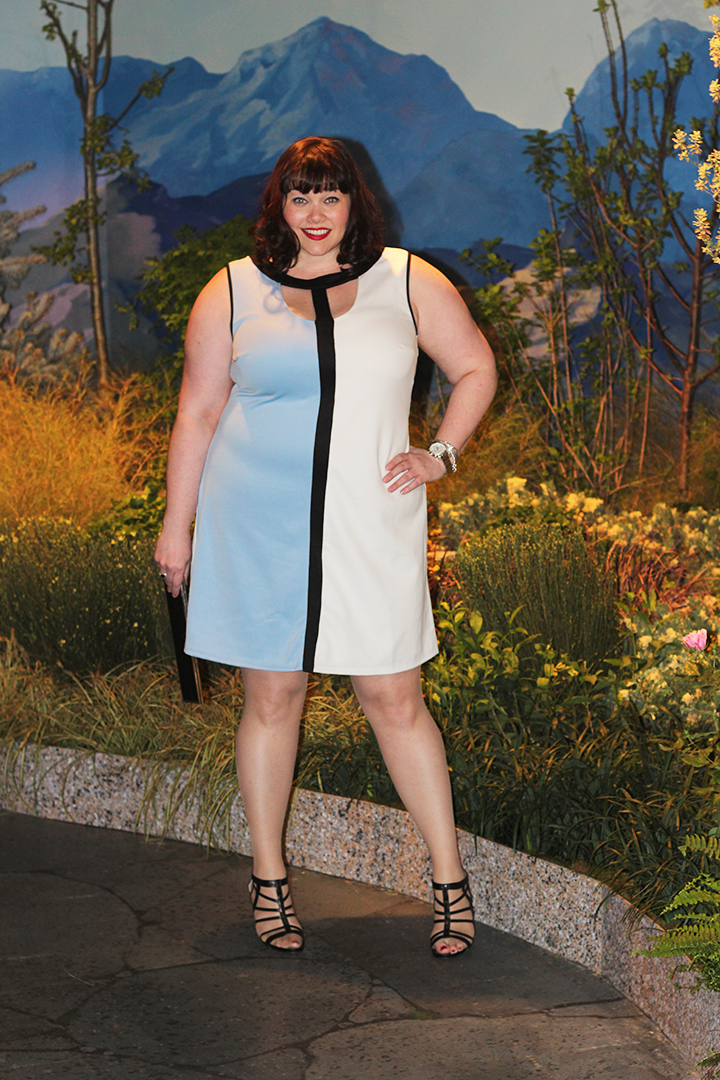 Plus Size Blogger Amber from Style Plus Curves in a Trixxie Colorblocked Sheath Dress