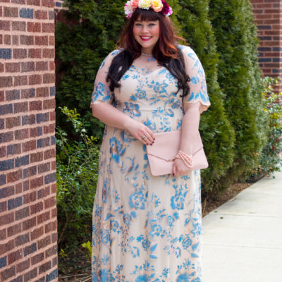 Blush and Blue: Adrianna Papell Embroidered Mesh Gown from Nordstrom